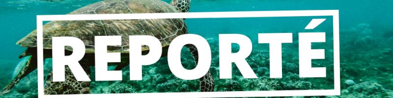 Festival de l'image sous-marine de Mayotte est reporté